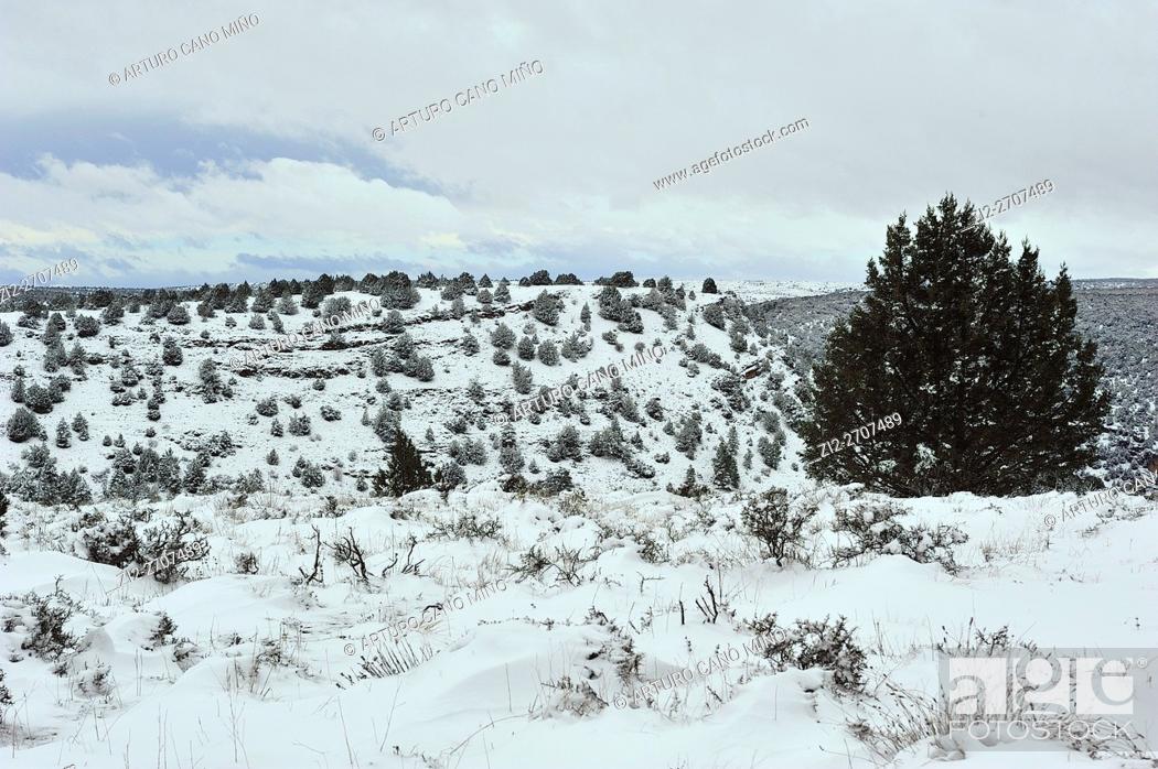 Imagen: Winter in the Alto Tajo Natural Park, Huertahernando, Guadalajara province, Spain.
