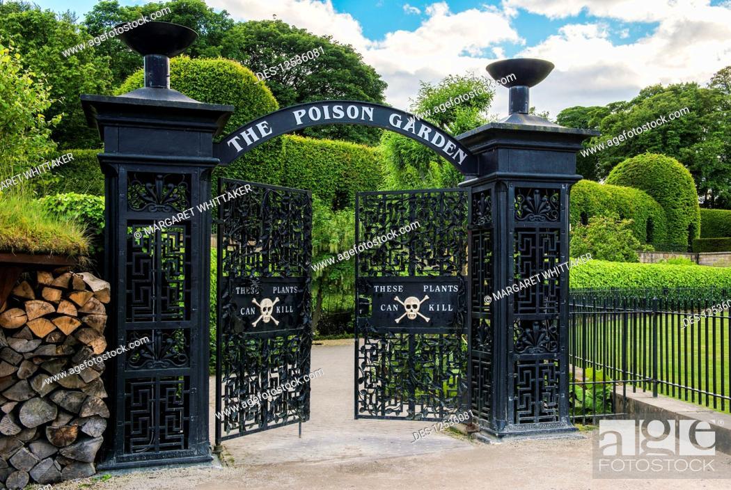World Famous Poison Garden Entrance In The Alnwick Garden Alnwick