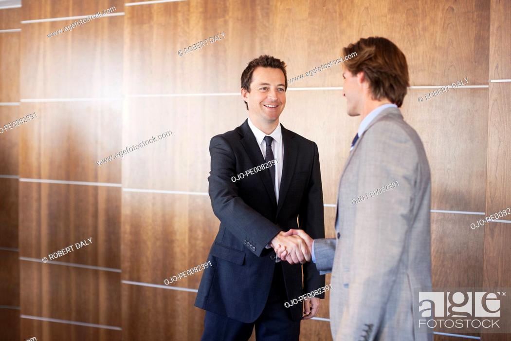 Stock Photo: Smiling businessmen shaking hands.