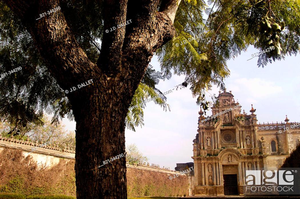 Stock Photo: Carthusian monastery church. Jerez de la Frontera. Cádiz province. Spain.