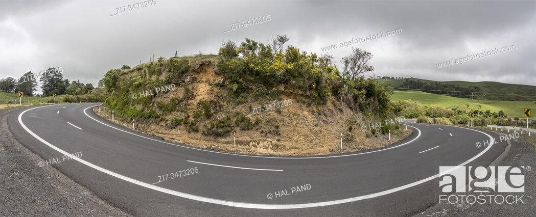 Stock Photo: road 25 hairpin turn in green hilly countryside landscape, shot in bright late spring light near Waihi, North Island, New Zealand.