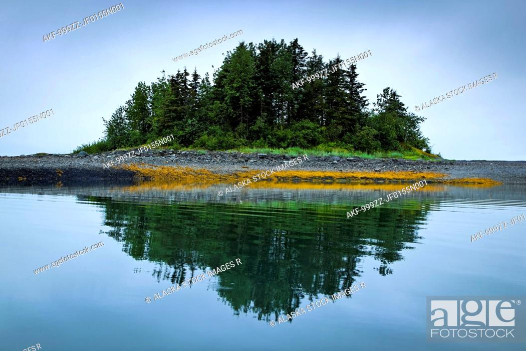 Stock Photo: Grove of green trees on small island reflecting in the waters of Sebree Cove, Glacier Bay National Park & Preserve, Southeast Alaska, Summer.