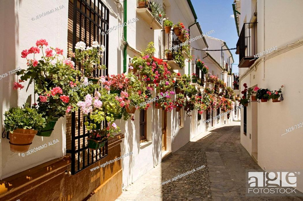 Imagen: Street in the Villa district, Priego de Cordoba. Cordoba province, Andalucia, Spain.
