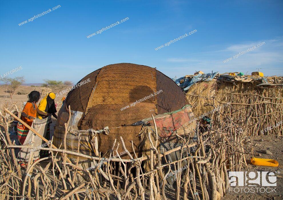 Stock Photo: Afar tribe women building a hut behind a wooden fence, Afar region, Mile, Ethiopia.