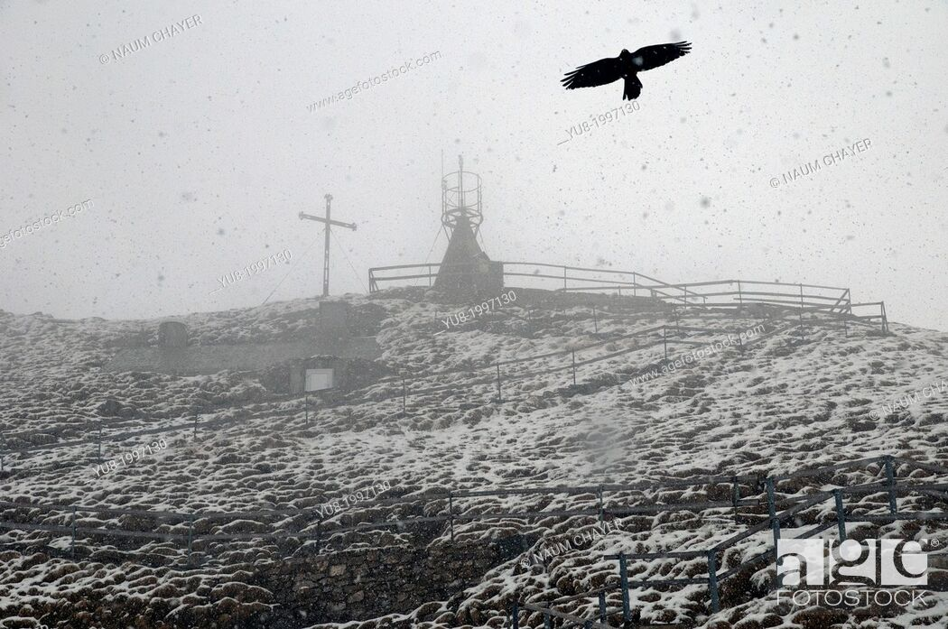 Stock Photo: Mount Pilatus, snowstorm in May, Switzerland.