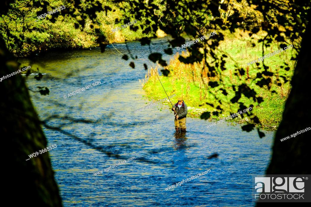 Stock Photo: A lone fisherman on the River Tweed in the Scottish Borders, Scotland.