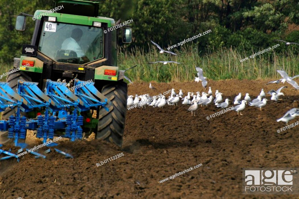 Stock Photo: erde, acre, agricultural, agriculture, agroindustry, alfred.
