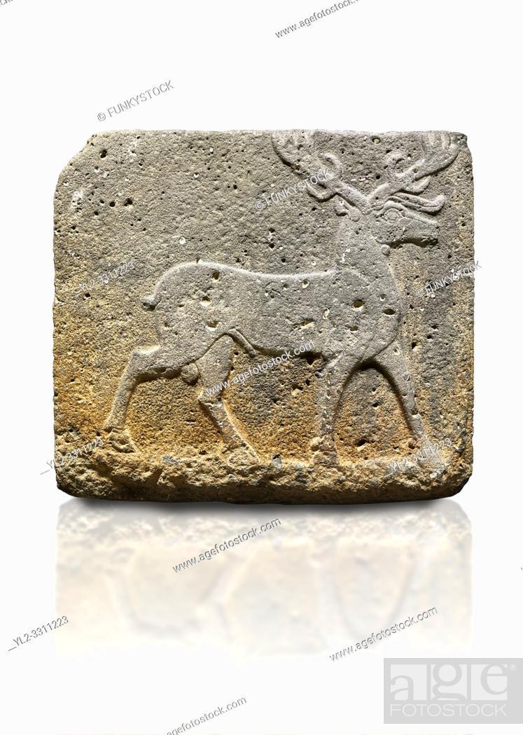 Stock Photo: Hittite monumental relief sculpted orthostat stone panel from Water Gate Basalt, Karkamıs, (Kargamıs), Carchemish (Karkemish). 900-700 BC . Stag.