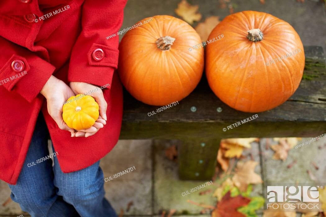 Stock Photo: High angle view of mature woman with pumpkins on garden bench.