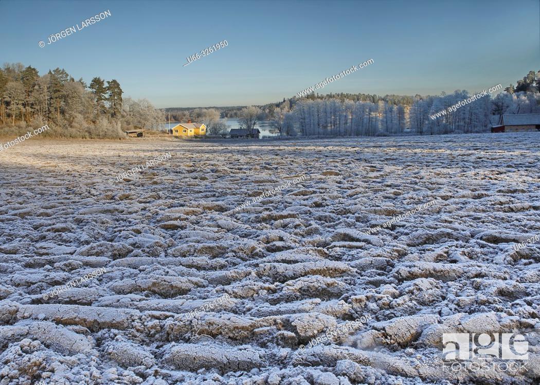 Stock Photo: Winter landscape with frost. Botlyrka, Sodermanland, Sweden.
