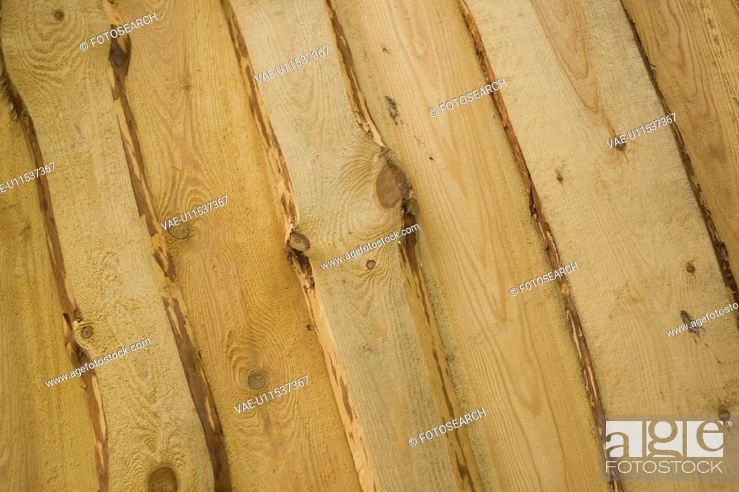Stock Photo: Close-Up, Full Frame, Indoors, Natural Pattern.