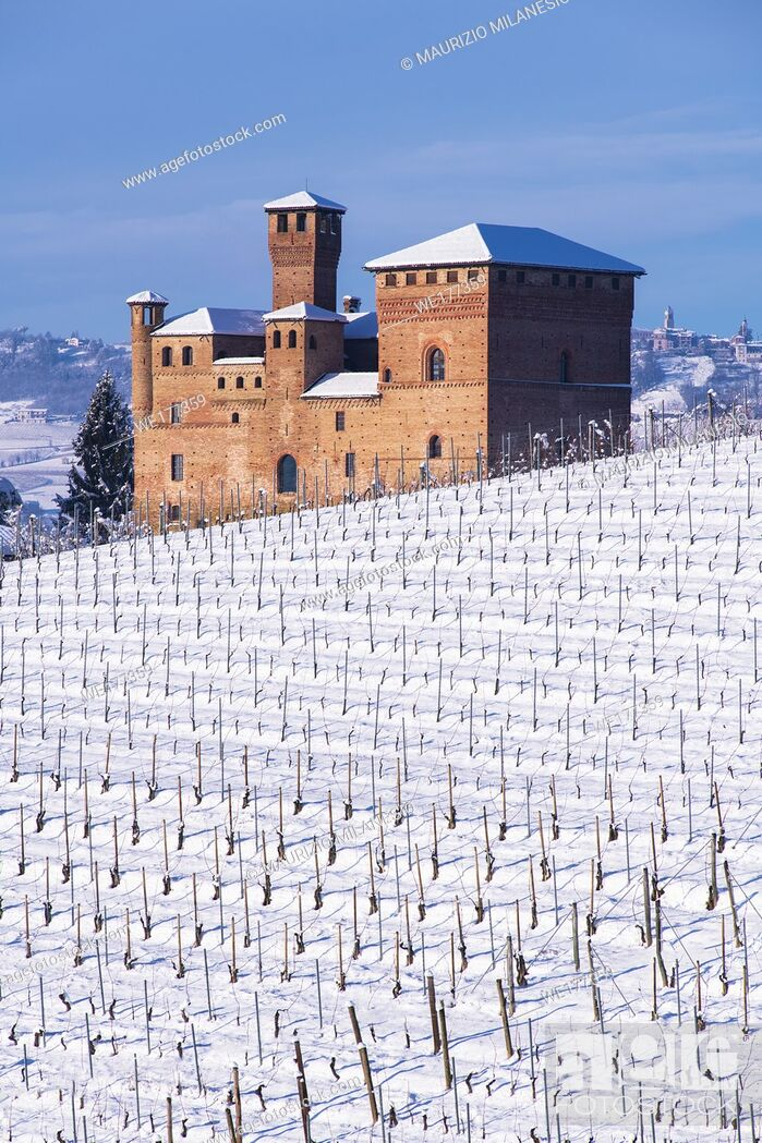 Stock Photo: Grinzane Cavour, Piedmont, Italy View on the Castle, Unesco territory, and a snowy vineyard, the sky is blue.