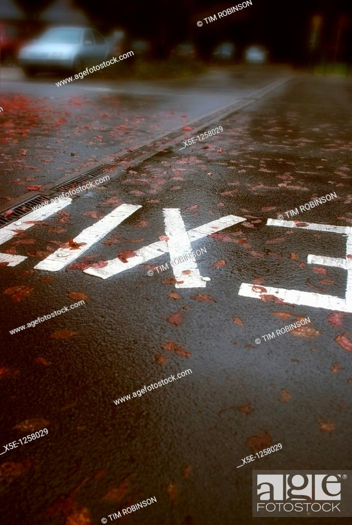 Stock Photo: The word exit painted on roadway in car park.