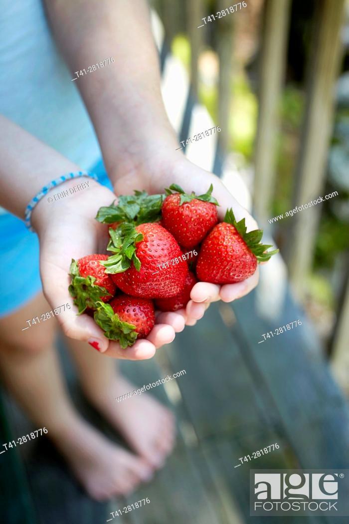 Stock Photo: Strawberries in hands.
