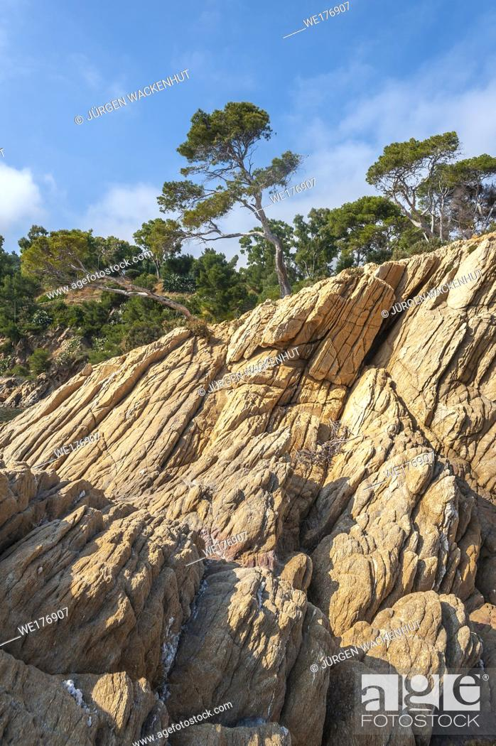 Stock Photo: Rocky coast on Pointe du Layet, Le Lavandou, Var, Provence-Alpes-Cote d`Azur, France, Europe.