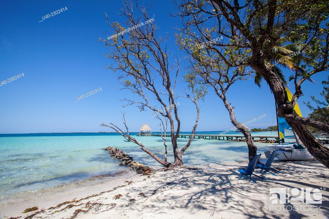 Stock Photo: Belize, Thatch Caye.