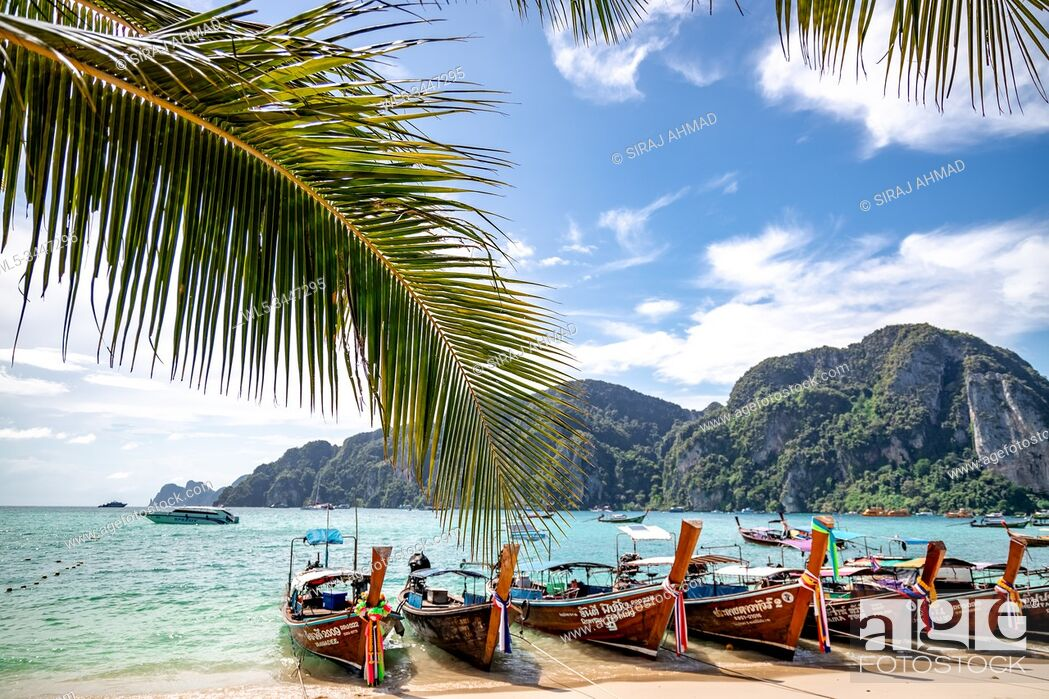 Stock Photo: Phi Phi Island, Thailand - November 26 2019: traditional wooden longtail boats parked at a beach in Phi Phi Island. Clear water and clean beach.