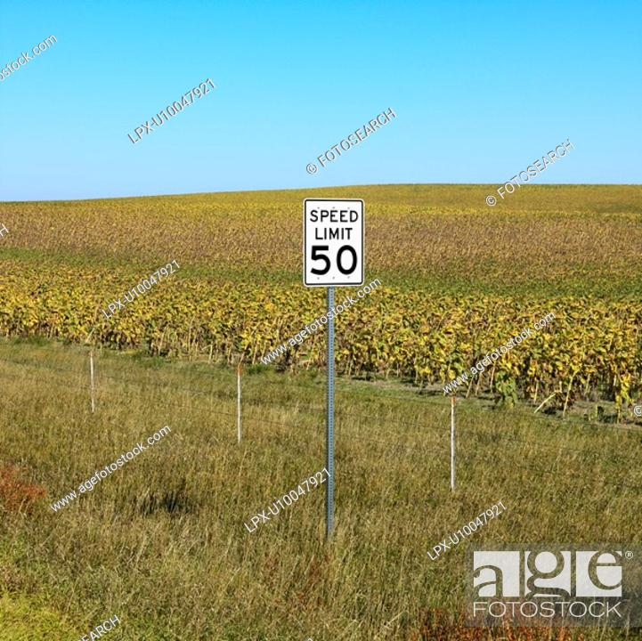Stock Photo: Speed limit sign in front of rural field of crops.