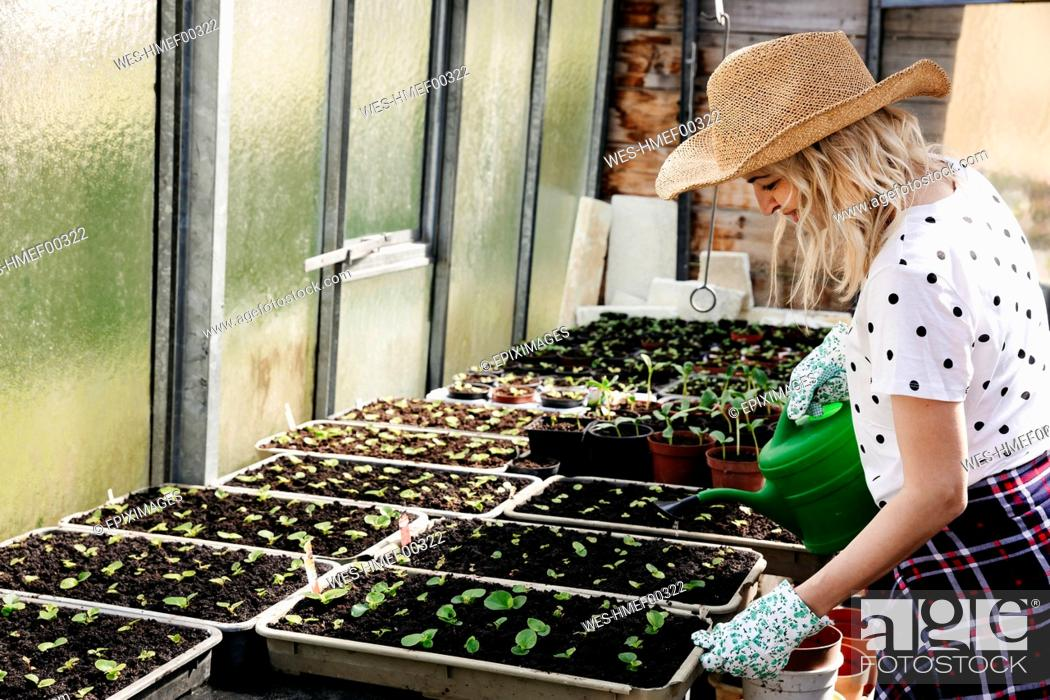 Imagen: Young woman gardening in a greenhouse.
