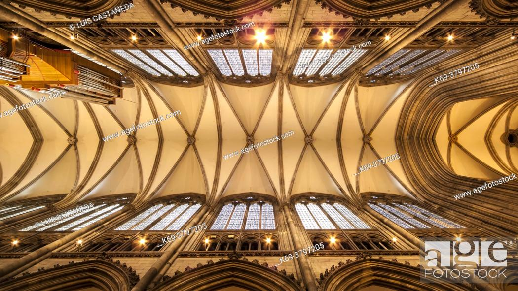 Imagen: Gothic Ceiling. The Cathedral. Cologne. Germany.