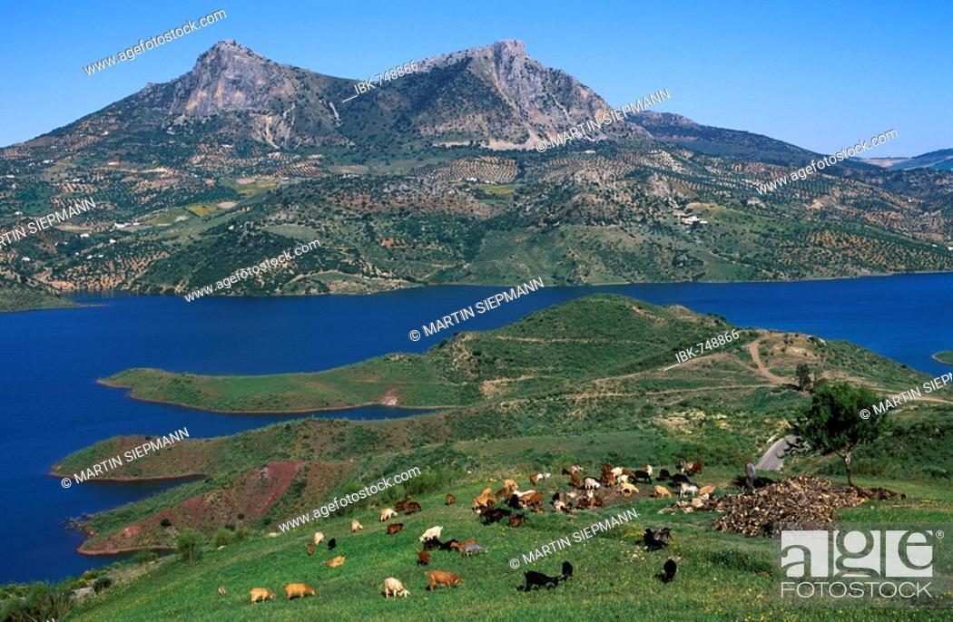 Stock Photo: Embalse de Zahara, reservoir in the Sierra de Grazalema, Cádiz Province, Andalusia, Spain.