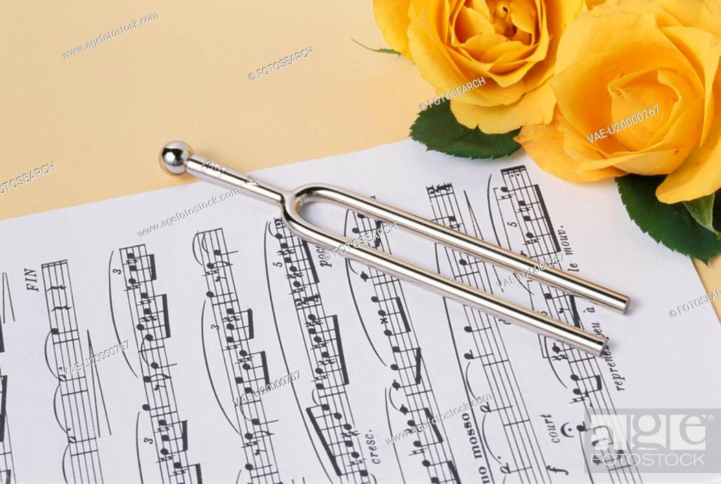 Stock Photo: A Rose And A Tuning Fork And A Score.
