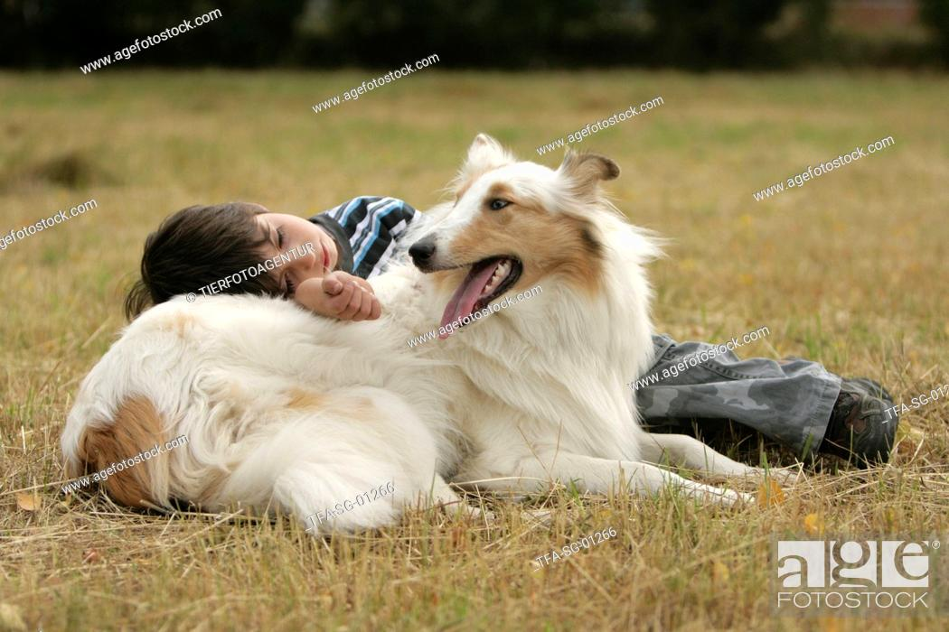 Stock Photo: boy with collie.