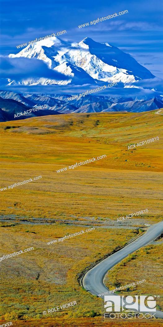 Photo de stock: Denali National Park road leading towards the snow capped Mount McKinley.