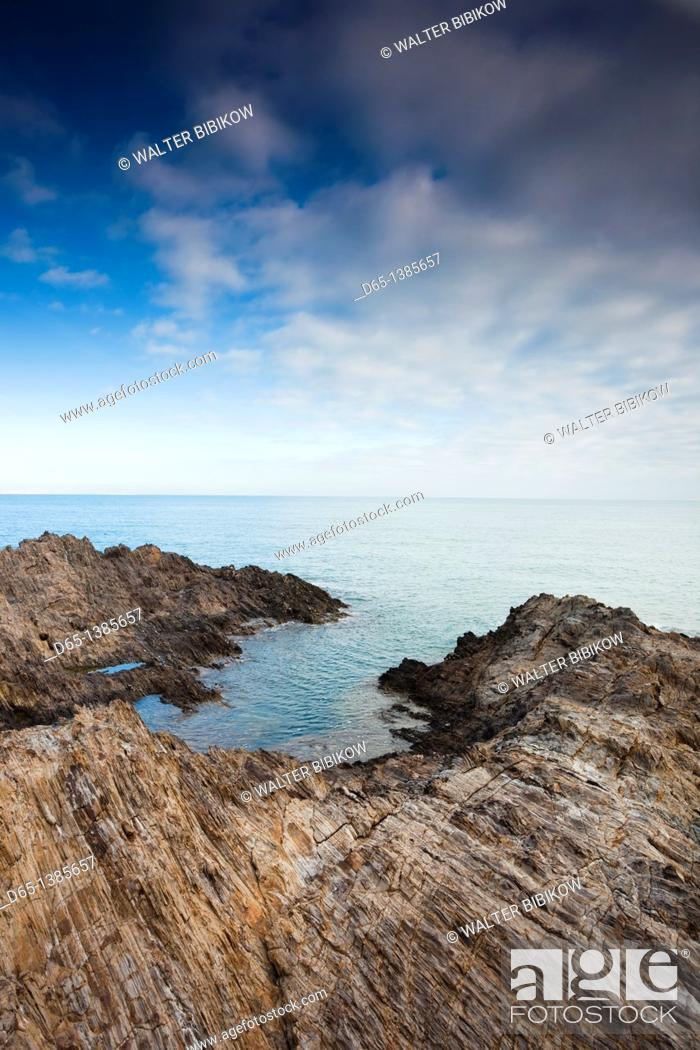 Stock Photo: France, Languedoc-Roussillon, Pyrennes-Orientales Department, Vermillion Coast Area, Collioure, harbor view.