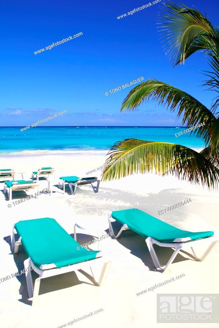 Stock Photo: Caribbean beach turquoise sea with green hammocks.