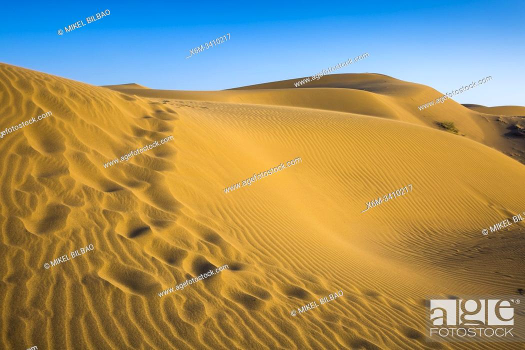 Stock Photo: Maranjab desert. Near to Kashan city. Iran, Asia.