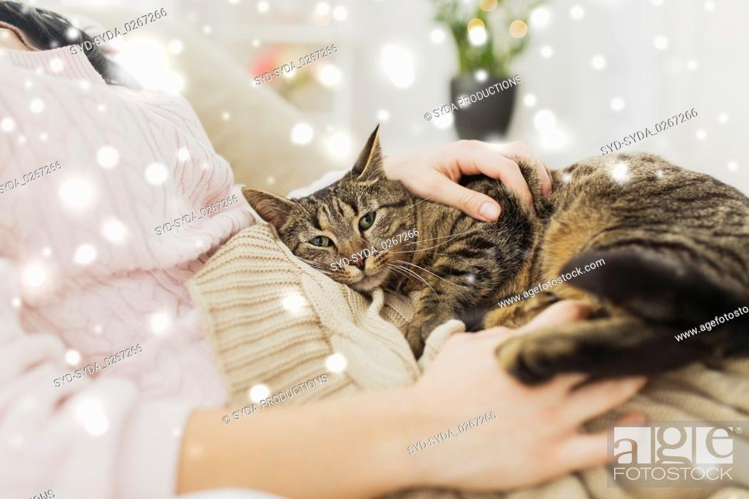 Stock Photo: close up of owner with tabby cat in bed over snow.
