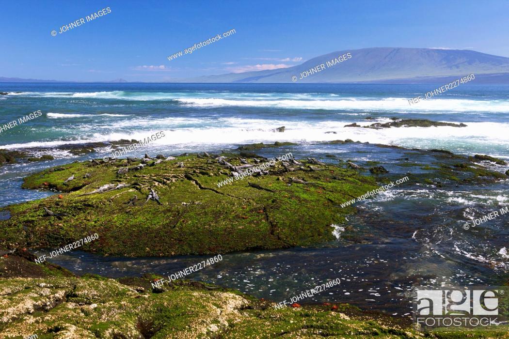 Stock Photo: View of rocky coast.