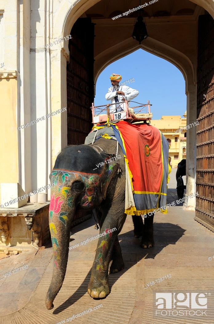 Stock Photo: India, Rajasthan, Amber fort, Mahout on elephant back leaving the palace.