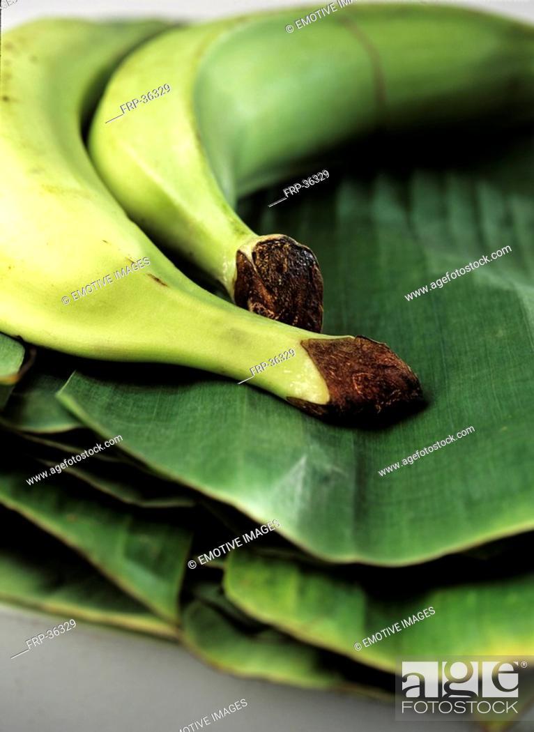 Stock Photo: Plantain, Bananas Musa paradisiaca.