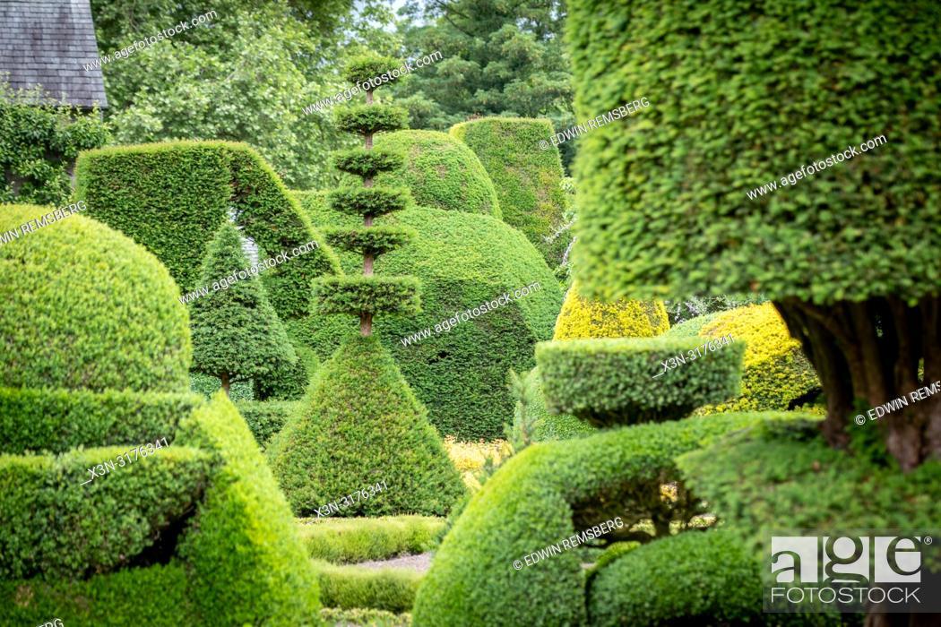 Stock Photo: Beautiful geometric Hedgebery of Levens Hall , Kendal, Cumbria , UK.