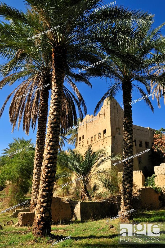Stock Photo: historic adobe city Al Hamra, Dakhliyah Region, Sultanate of Oman, Arabia, Middle East.