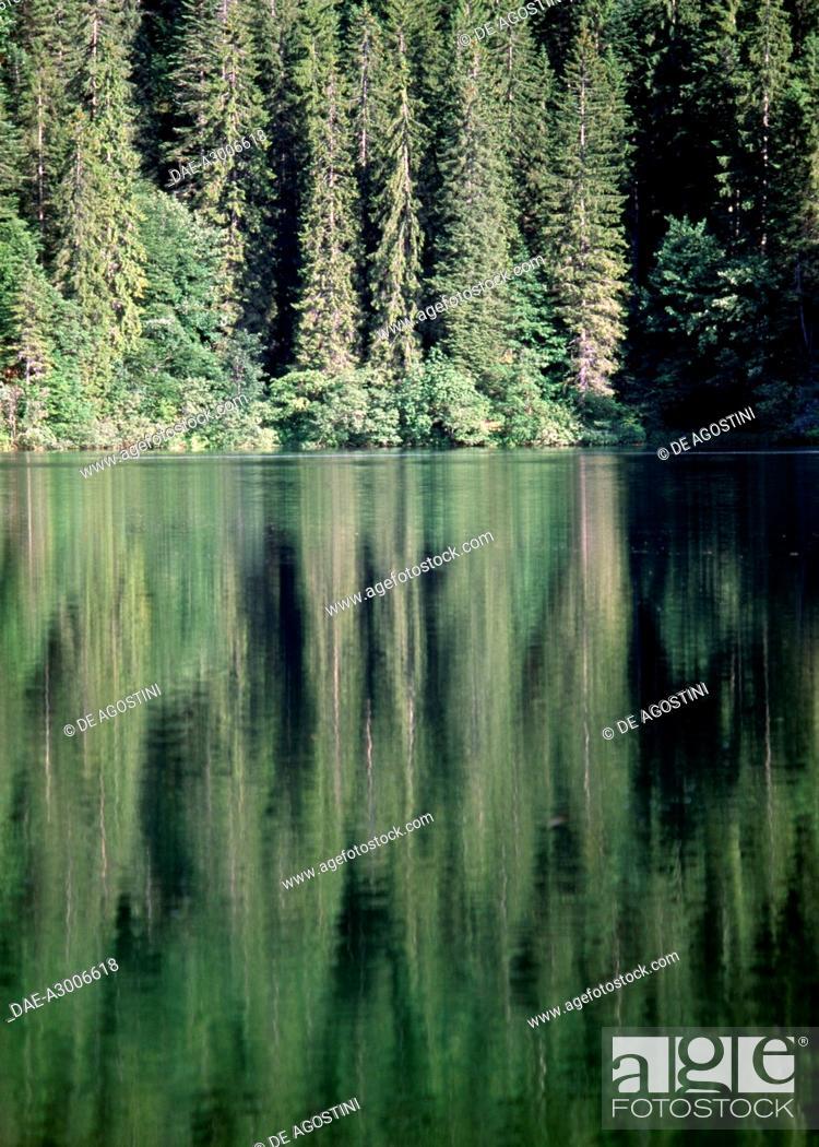 Stock Photo: Tovel Lake, Adamello-Brenta Nature Park, Trentino-Alto Adige, Italy.