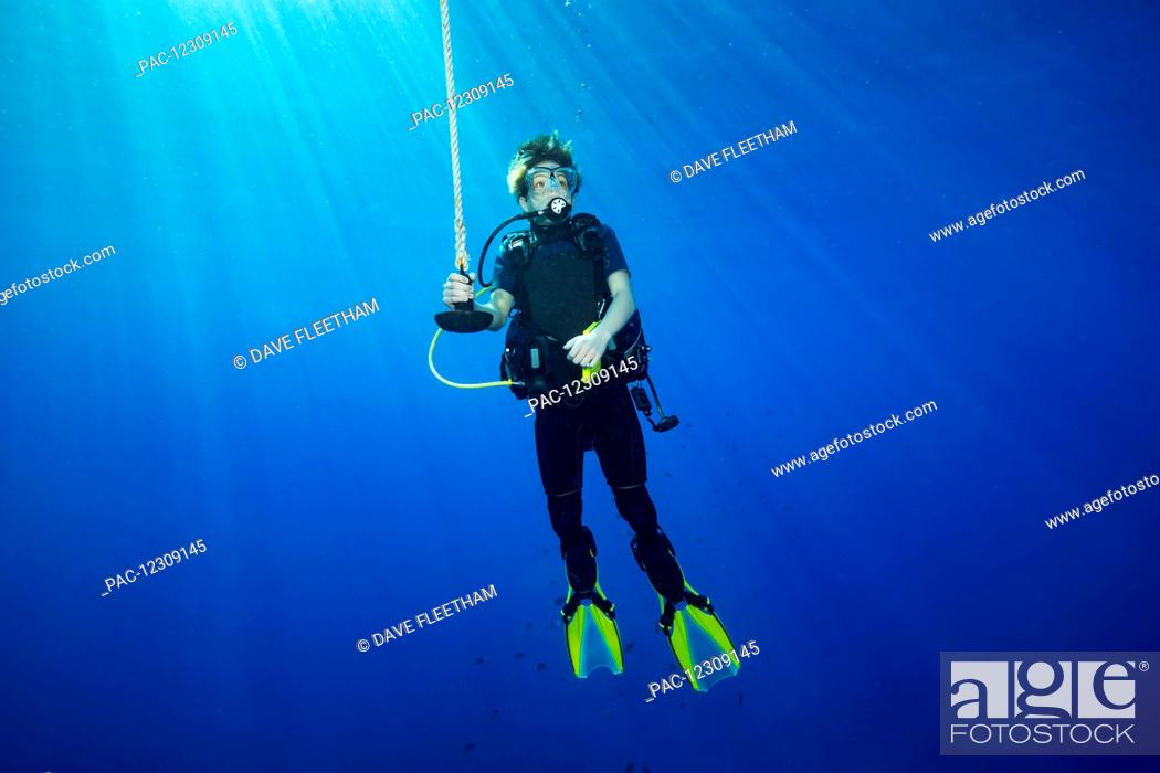 Stock Photo: A diver hanging on a line at 15 feet for a decompression stop before surfacing; Hawaii, United States of America.
