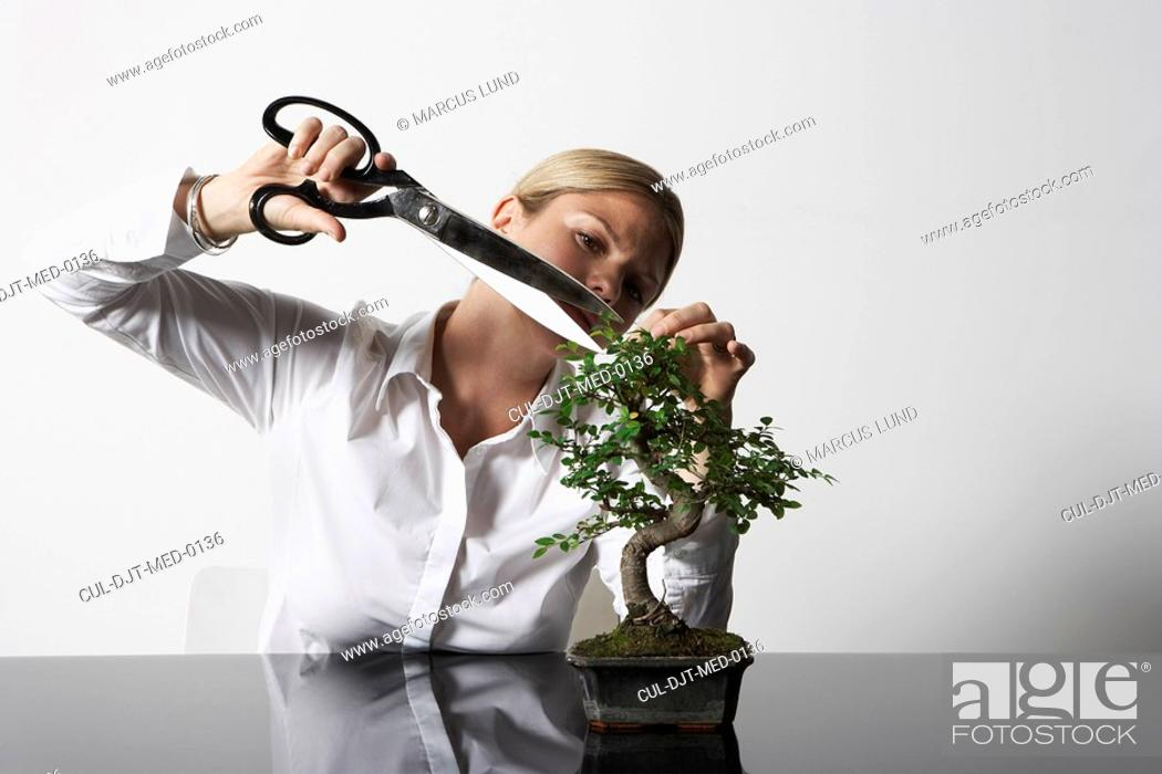 Stock Photo: Young business woman at desk pruning Bonsai tree.