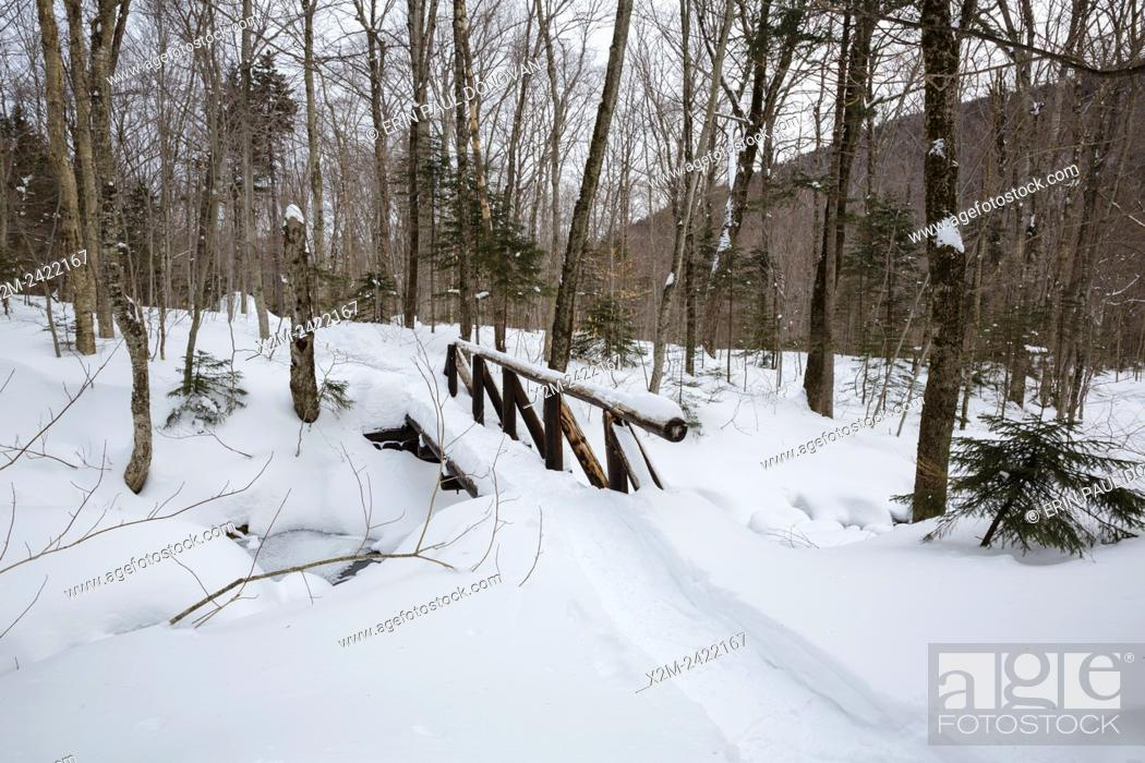 Stock Photo: Foot bridge along the Appalachian Trail (Beaver Brook Trail) in Kinsman Notch of the White Mountains, New Hampshire USA during the winter months.