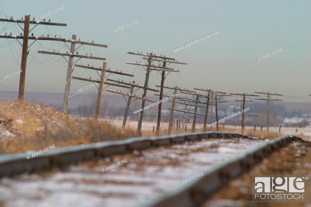 Stock Photo: Wobbly improvised looking powerlines and rail tracks. Alberta praerie, west of Dinosaur Provincial Park along Hwy 1. Alberta, Canada.