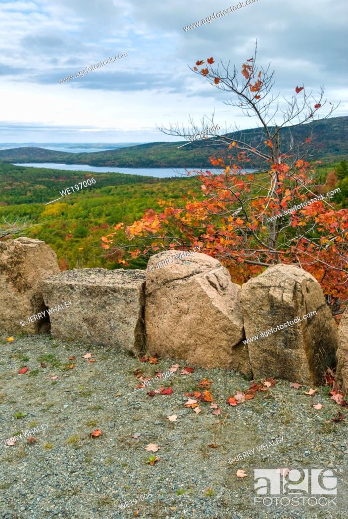 Photo de stock: Autumn Views on Carriage Roads in Acadia National Park on Mount Desert Island in Maine, USA.