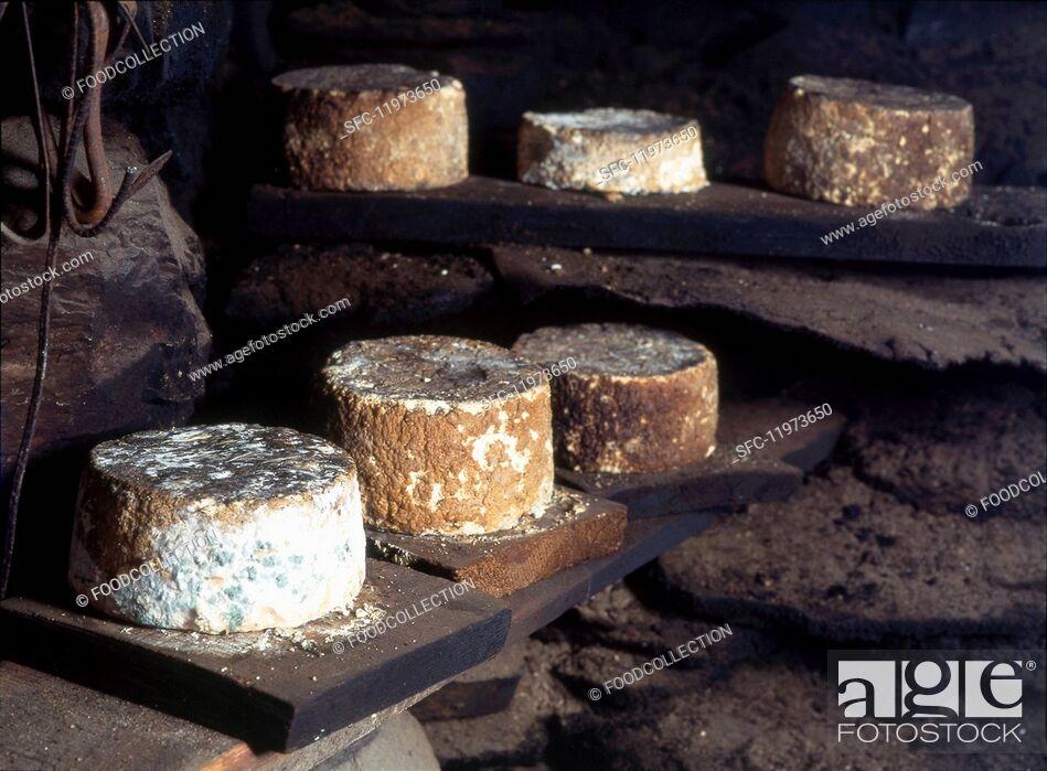 Stock Photo: Smoked Toma cheese, Italy.