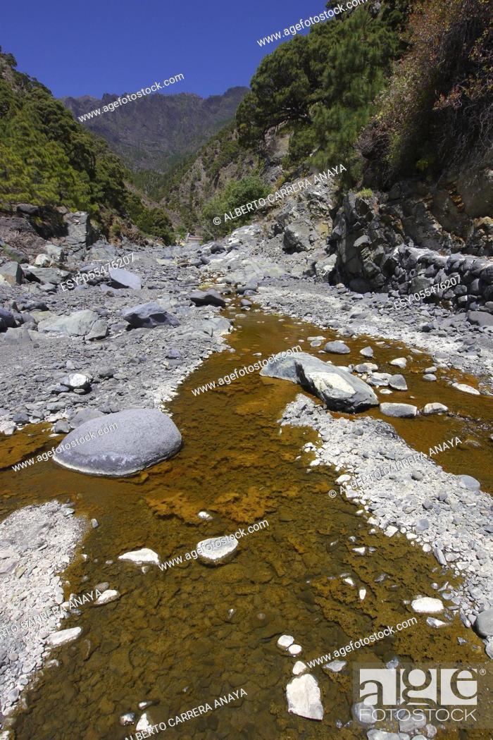 Imagen: Barranco de las Angustias, Taburiente River, Caldera de Taburiente National Park, Biosphere Reserve, ZEPA, LIC, La Palma, Canary Islands, Spain, Europe.