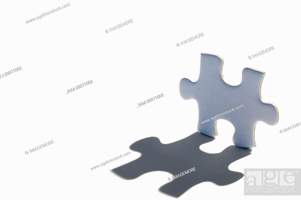 Stock Photo: A Jigsaw Piece and its shadow.