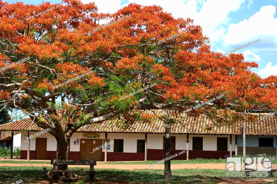 Stock Photo: Bolivia. Santa Cruz. Colonial Church of Santa Ana (Chiquitania). Old Jesuit Mission(1755). UNESCO World Heritage Site. Main square.