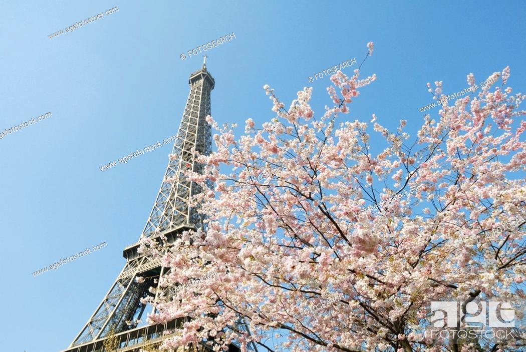 Stock Photo: Eiffel Tower.