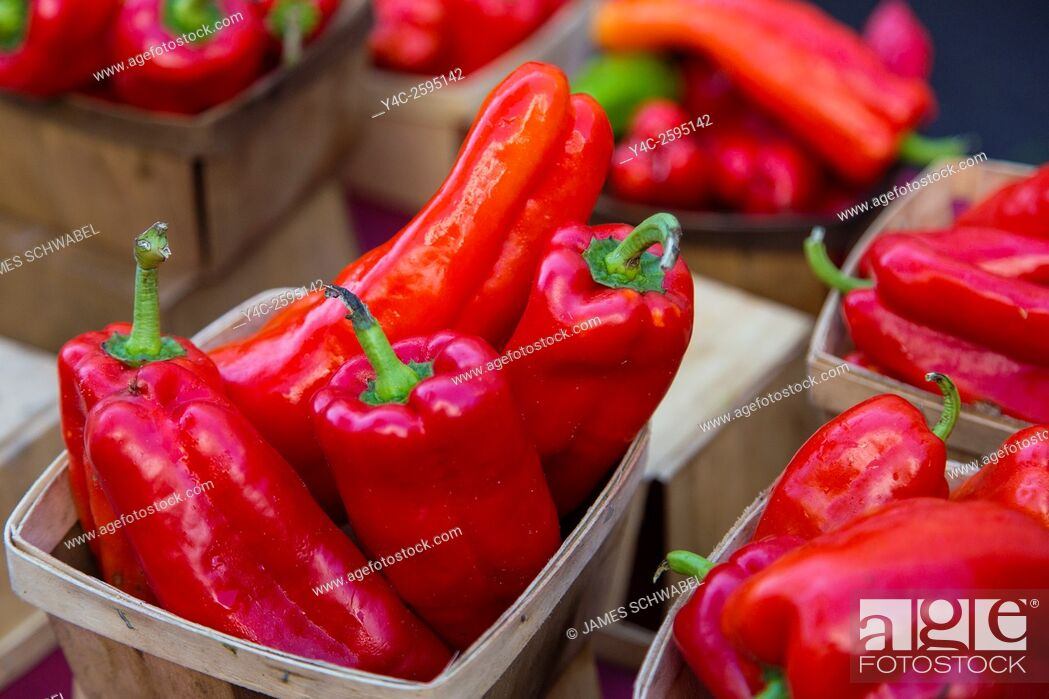 Imagen: Fresh raw red peppers vegetables in baskets at Sarasota Farmers Market in Sarasota Florida.