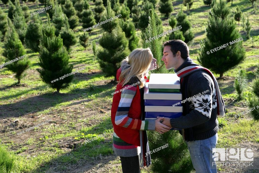 Stock Photo: Young couple about to kiss at Christmas tree field.